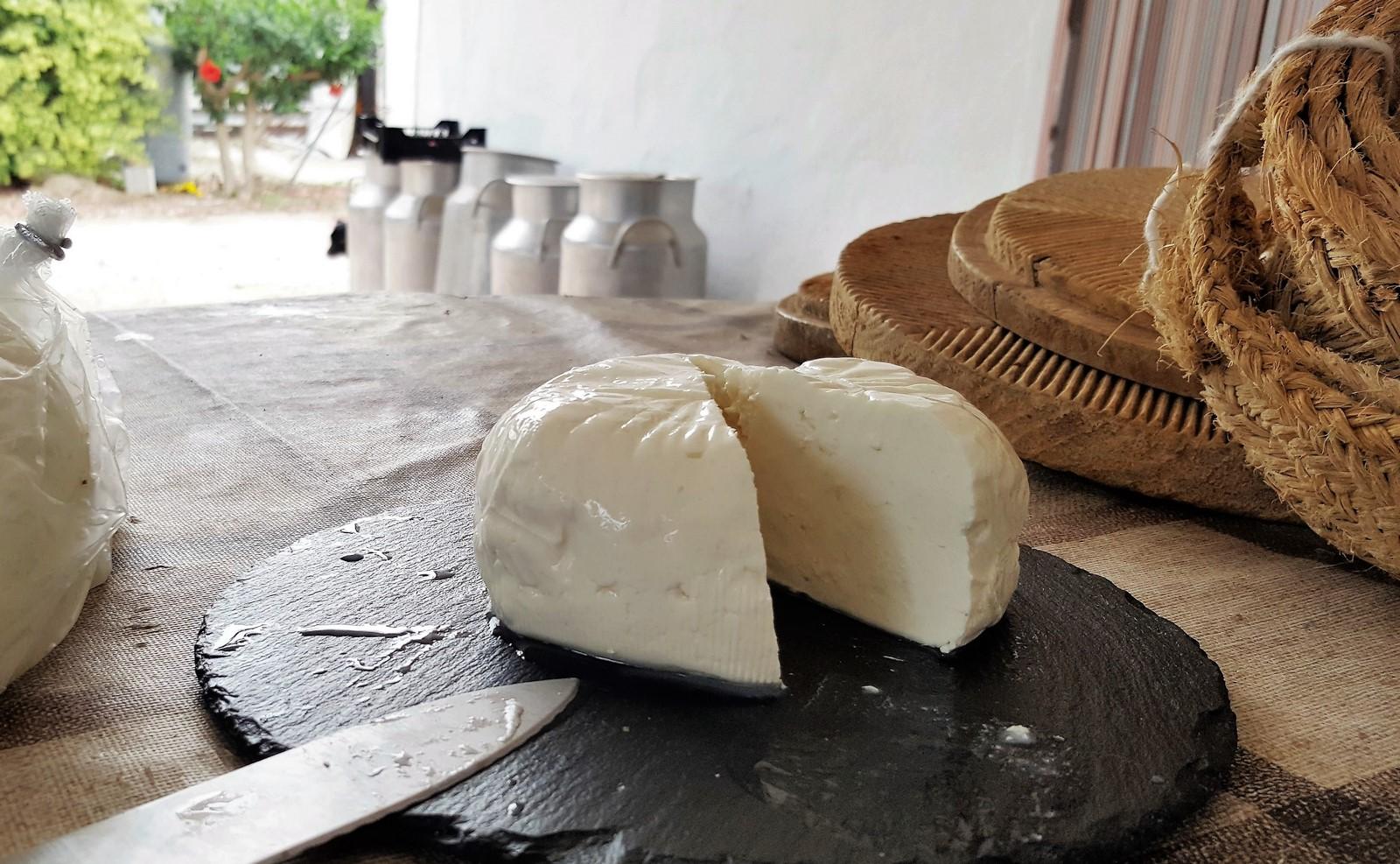 formatge gandia