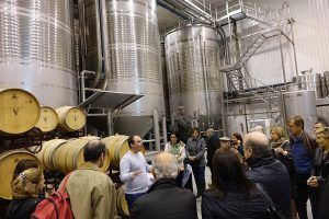 Visita guiada en Cooperativa Vinos de la Viña
